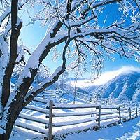 Константин Бальмонт - Зимой ли кончается год...