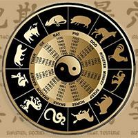 Жизнь с Петухом в астрологии