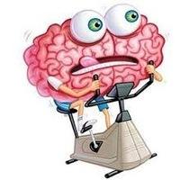 Простые способы перезарядить мозг и улучшить память