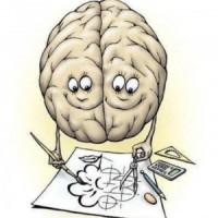 Удивительные факты о человеческом мозге